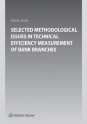 Selected Methodological Issues in Technical Efficiency Measurement of Bank Branches