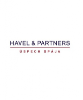 6b99b3f3d0d2d1fb4673fdf70c712f73/Havel & Partners.png