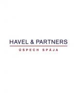79b21553066825aadc656e851e8b1efc/Havel & Partners.png