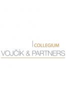 a8d12c5107f4ef84610953cc4cb2cc56/Vojcik_logo.png